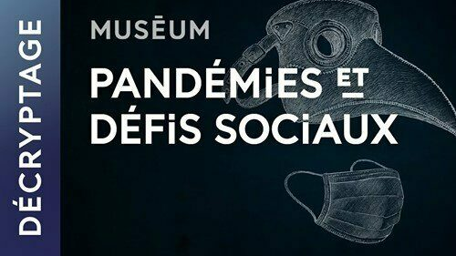Histoire sociologique des pandémies avec Anne Rasmussen
